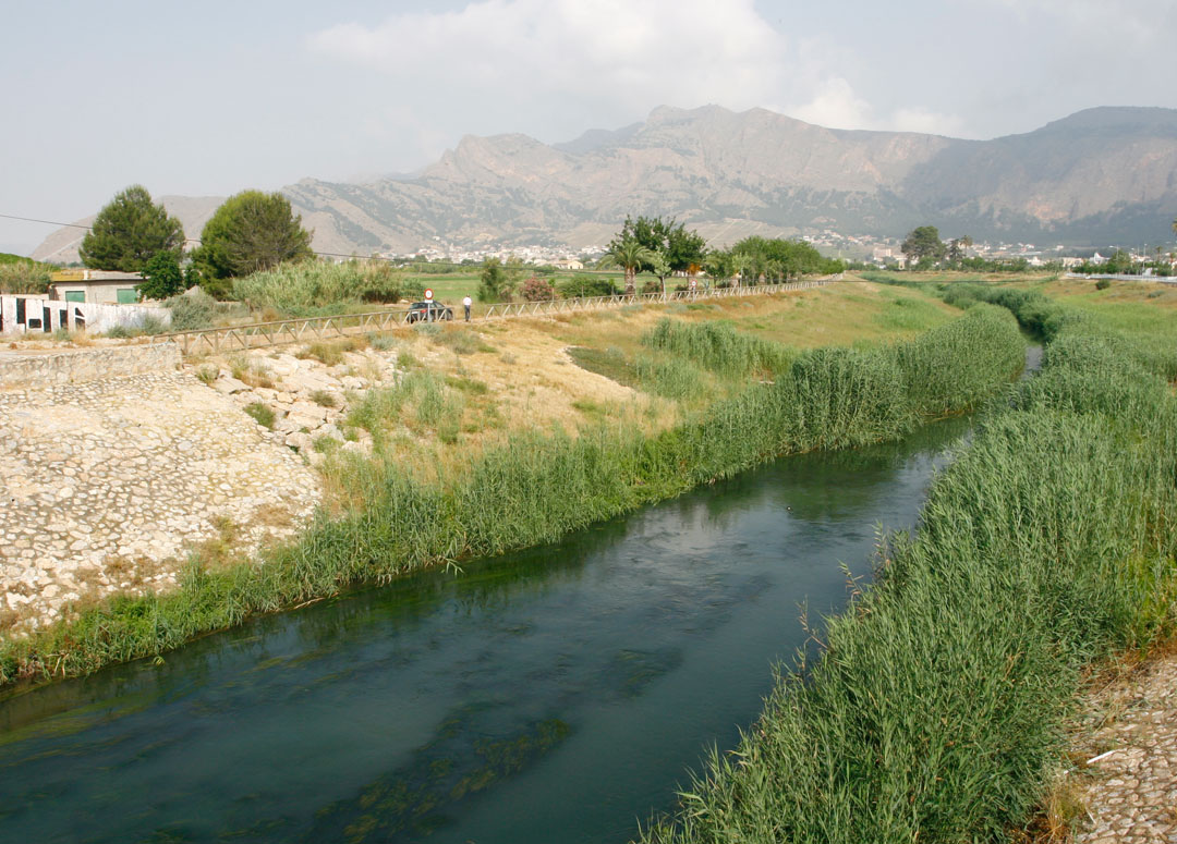 Cauce del río Segura