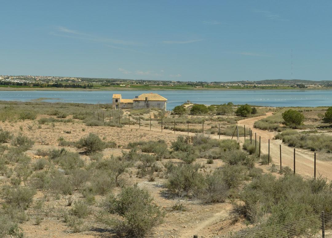 Laguna de la Mata