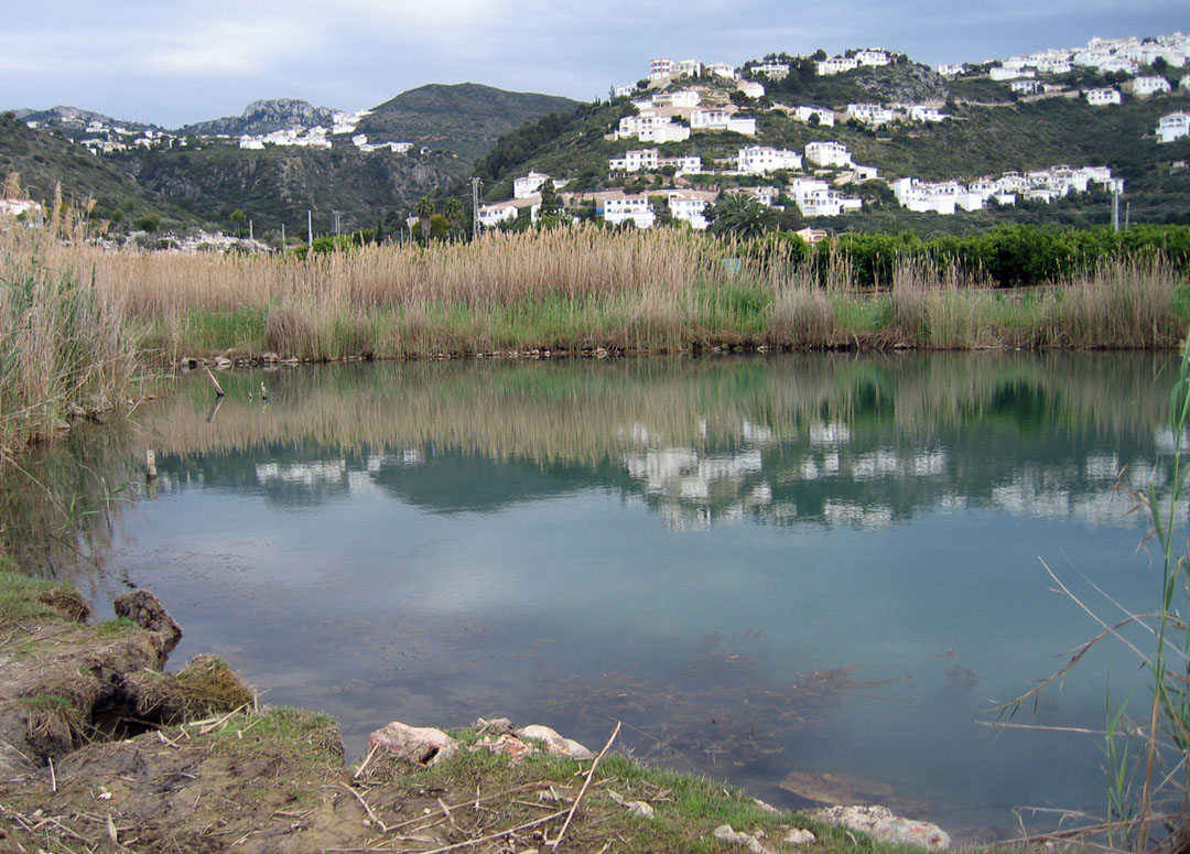 Balsa de Sineu. Manantial que forma una pequeña laguna