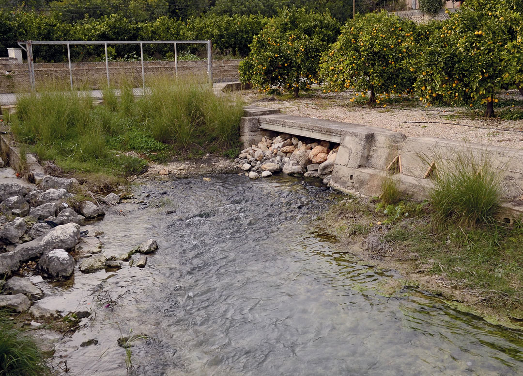 Manantial de La Bolata, drenaje principal del acuífero Mediodía